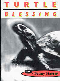 Image for Turtle Blessing : Poems
