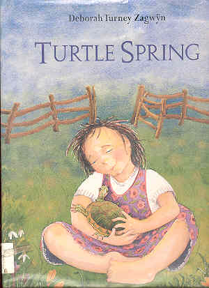 Image for Turtle Spring