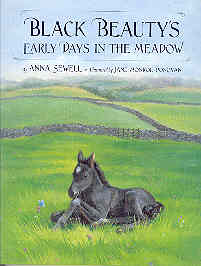Image for Black Beauty's Early Days in the Meadow