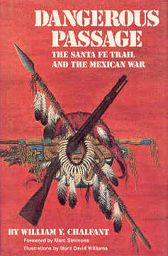 Image for Dangerous Passage: The Santa Fe Trail and the Mexican War