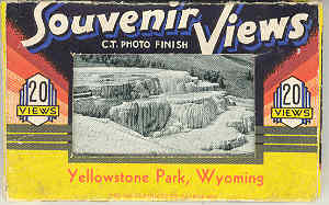 Image for Souvenir Views: Yellowstone Park Wyoming
