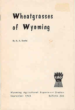 Image for Wheatgrasses of Wyoming Bulletin 336
