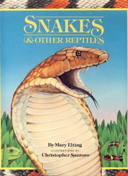 Image for Snakes & Other Reptiles