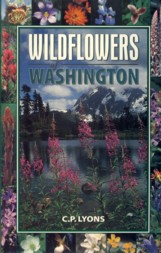 Image for Wildflowers of Washington