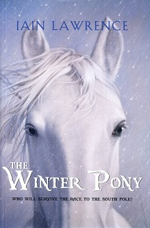 Image for The Winter Pony