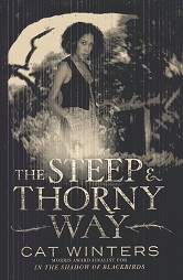 Image for The Steep and Thorny Way