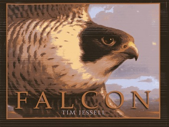 Image for Falcon