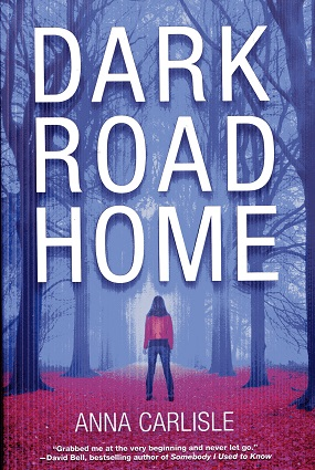Image for Dark Road Home: A Gin Sullivan Mystery
