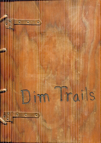 Image for Dim Trails: A Collection of Poems